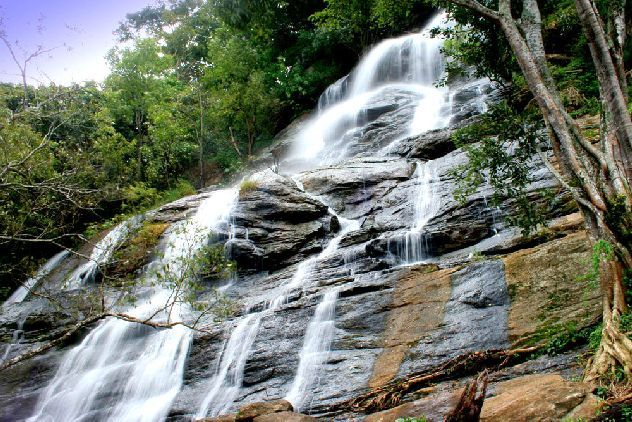 Car rentals Bangalore to yercaud Hills